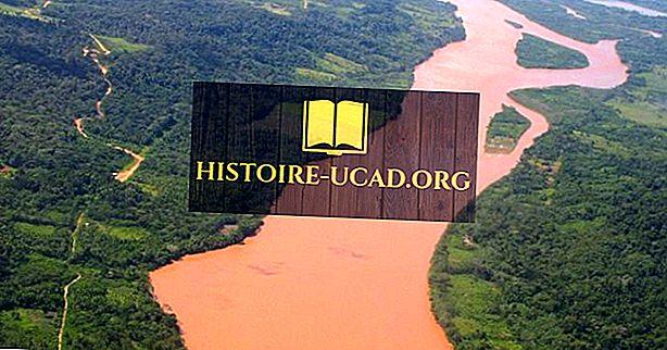 okolje - Reka Ucayali