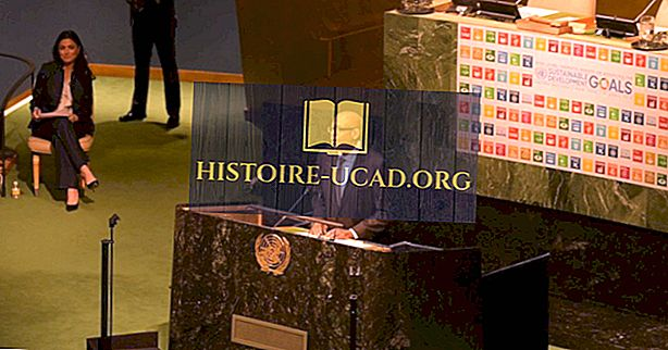 संयुक्त राष्ट्र के सतत विकास लक्ष्य क्या हैं?