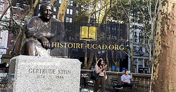 Gertrude Stein - schrijver, kunstverzamelaar, dichter