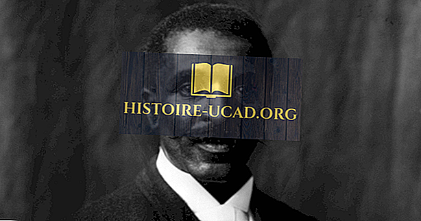 caracteristică - George Washington Carver Biografie