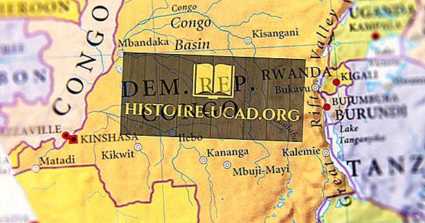 Које земље граниче са Демократском Републиком Конго?