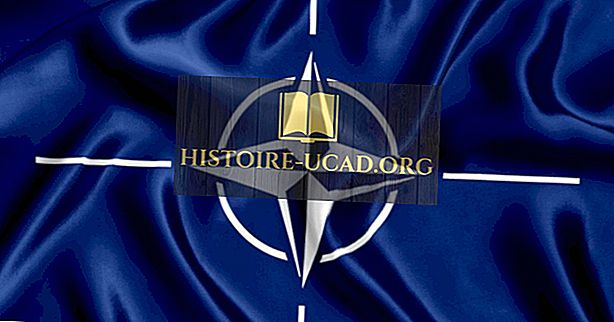 Was ist die Organisation des Nordatlantikvertrags (NATO)?