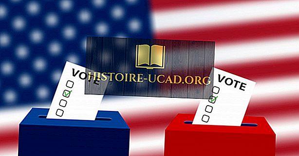 politik - Bagaimana Pilihan Raya Presiden AS Beroperasi?