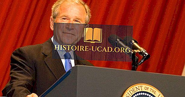 política - ¿Quién fue el presidente número 43 de los Estados Unidos?