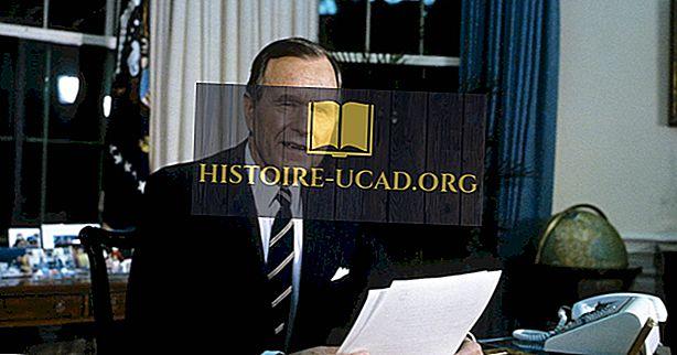 Kas bija Amerikas Savienoto Valstu 41. prezidents?
