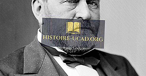 política - Ulysses S. Grant, décimo octavo presidente de los Estados Unidos