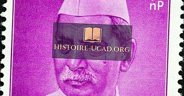 Vem var Indiens första president?