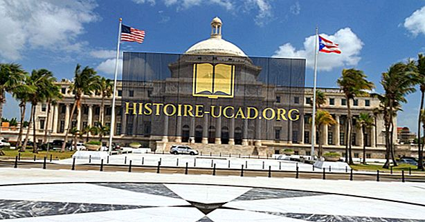 Apakah Jenis Kerajaan Adakah Puerto Rico Memiliki?