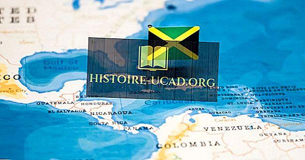 Apa Jenis Pemerintahan Apakah Jamaika Memiliki?