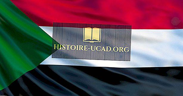 Kokios rūšies vyriausybė turi Sudaną?