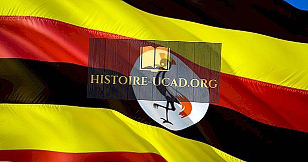 การเมือง - ประธานาธิบดีแห่งยูกันดา