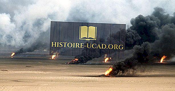 การเมือง - ทำไมอิรักบุกคูเวตในปี 1990