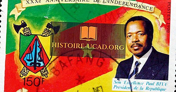 Les présidents du cameroun