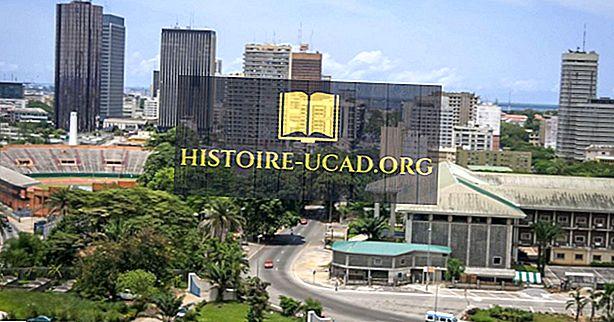 Présidents de Côte d'Ivoire depuis 1960