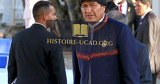 politiko - Seznam predsednikov Bolivije