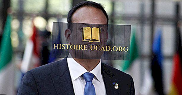 politiko - Kaj je Taoiseach?