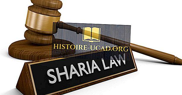 กฎหมายอิสลามคืออะไร