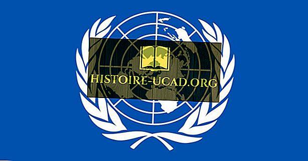 Combien de pays les Nations Unies reconnaissent-elles?