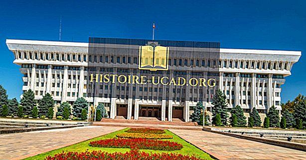 किस प्रकार की सरकार के पास किर्गिस्तान है?