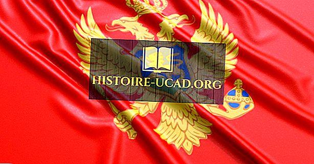 Какъв тип правителство има Черна гора?