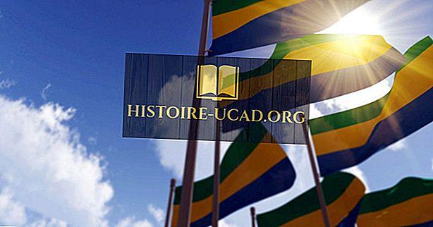 Kokios rūšies vyriausybė turi Gaboną?