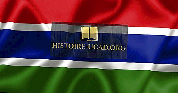 Gambiya'nın Ne Tür Hükümeti Var?