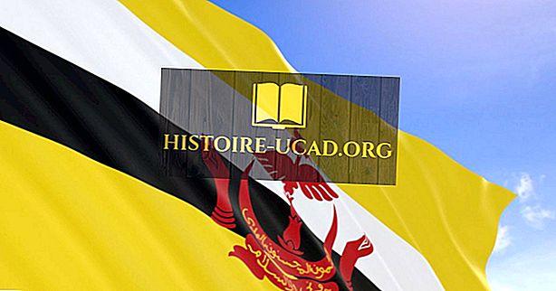 Kakšen tip vlade ima Brunei?