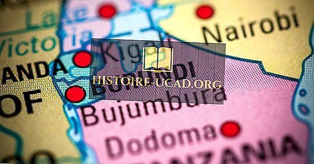 Hvilken type regjering har Burundi?