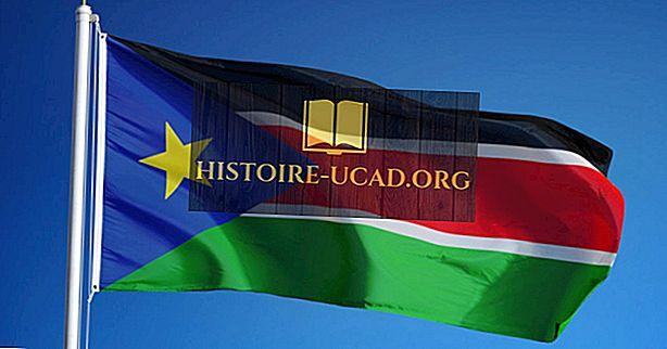 दक्षिण सूडान के पास किस प्रकार की सरकार है?