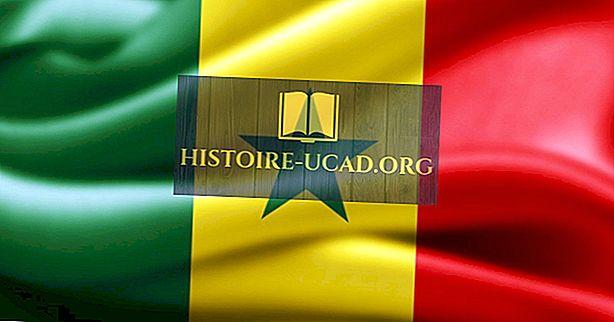 Kokio tipo vyriausybė veikia Senegale?