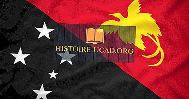 Jaki rodzaj rządu ma Papua Nowa Gwinea?