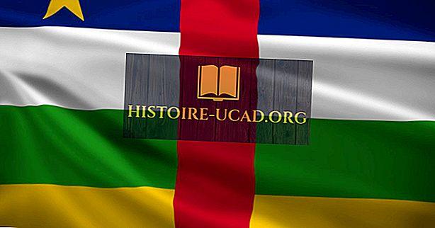 ¿Qué tipo de gobierno tiene la República Centroafricana?