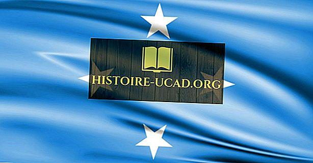 Који тип владе имају Федералне државе Микронезије?