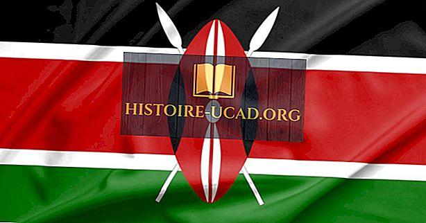Siapa Raila Odinga?