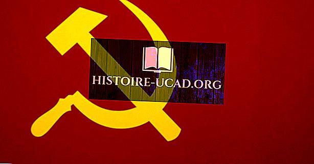 ما هي الاختلافات بين الاشتراكية والشيوعية؟