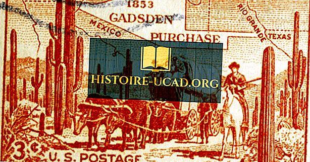 Mikä oli Gadsden-ostos?