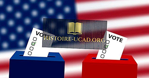 ¿Qué estados dividen sus votos electorales?