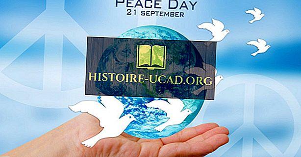 Apa Dan Kapan Hari Keamanan Antarabangsa?