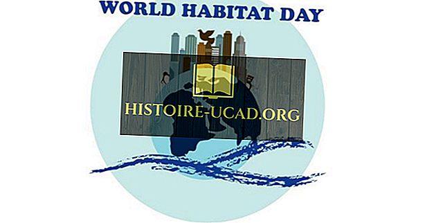 Πότε και γιατί γιορτάζεται η Παγκόσμια Ημέρα Οικοτόπων;