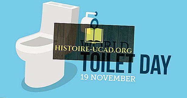 Кога и защо се празнува Световният ден на тоалетната?