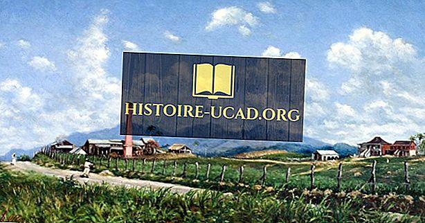 Mi a Hacienda rendszer?