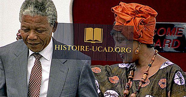 Мечо Мандела - важни фигури в историята на Африка