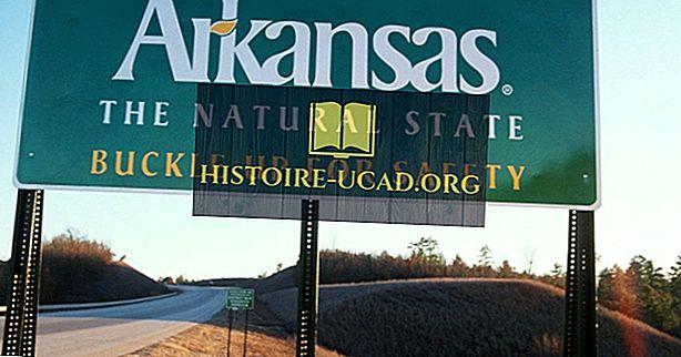 Qual é a composição étnica do Arkansas?