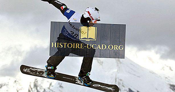 Pays les plus performants des championnats du monde de snowboard de la FIS