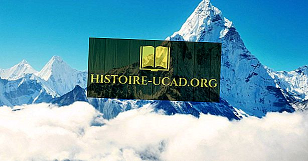 Kdo je bil prva slepa oseba na vrhu Mount Everest?