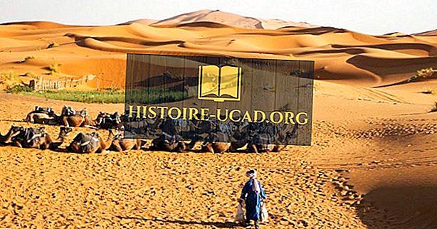 Siapakah Orang Tuareg Sahara?