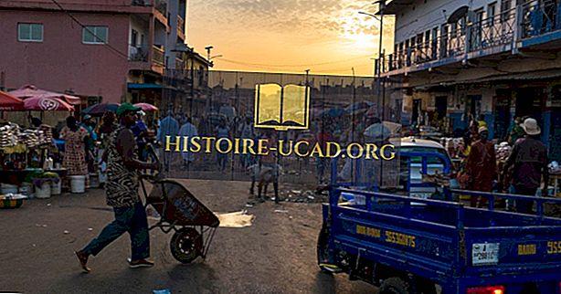 Co je to kultura Guineje-Bissau?