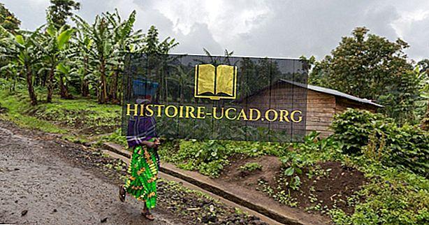 La culture de la République démocratique du Congo