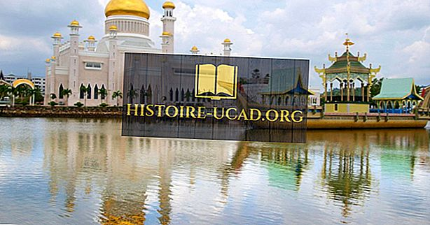 Náboženské presvedčenie V Bruneji