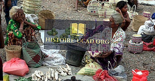 Budaya Timor Timur